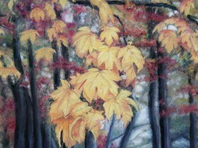 Shena Pyke - Soft Pastel on Pastelmat - Autumn Glow - Highly Commended