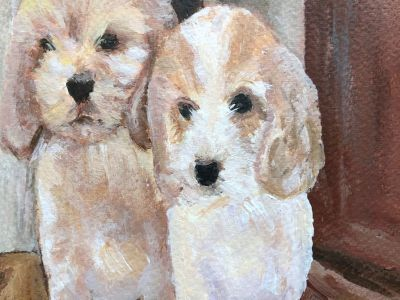 Noreen Simpson - Dogs
